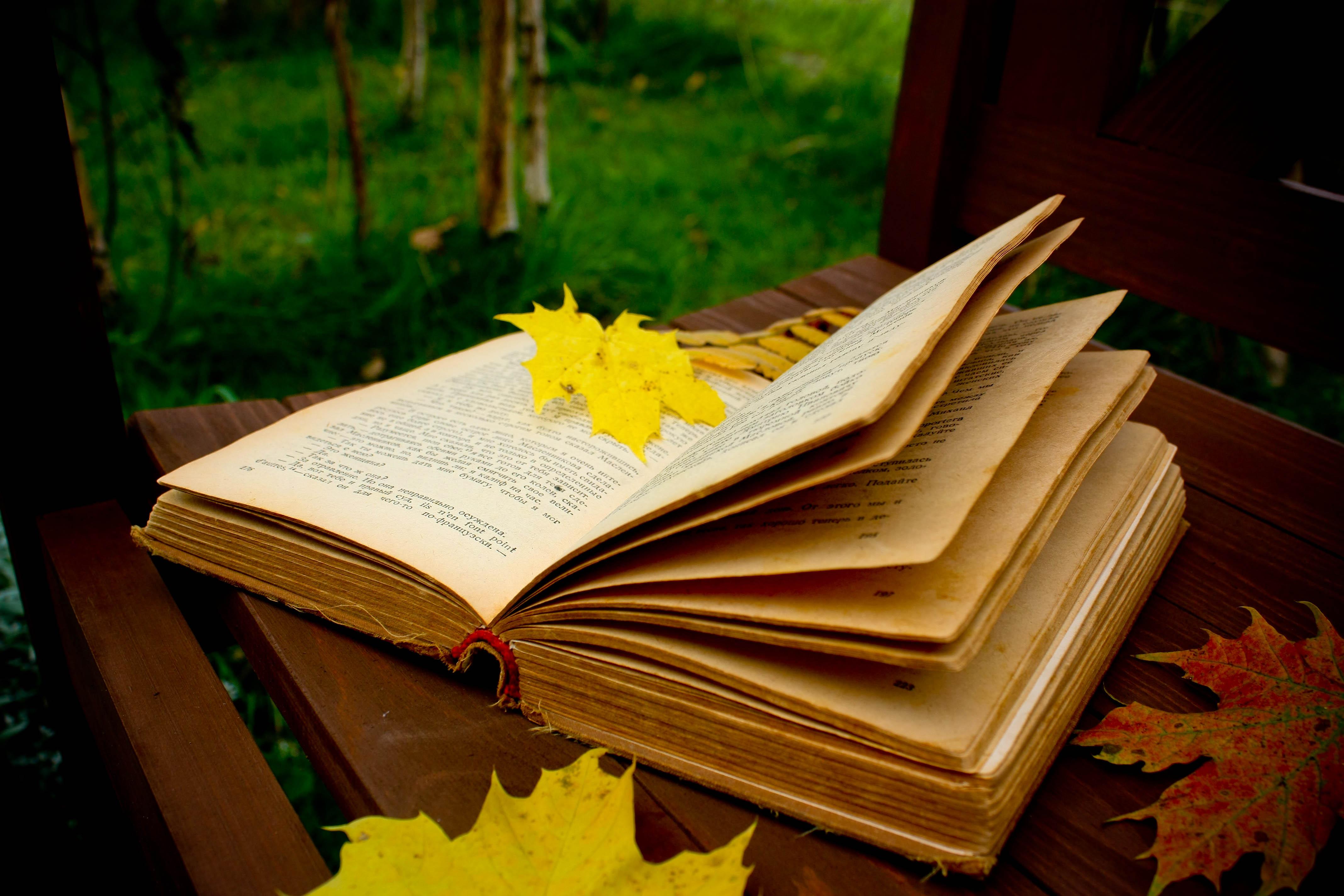 Resultado de imagen para otoño libros